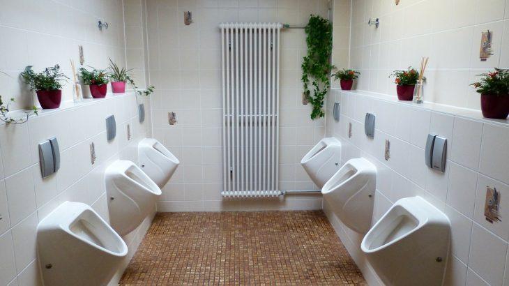 wc propre